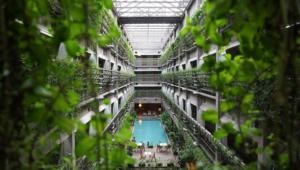 Camilo Ibrahim Issa - Camilo Ibrahim Issa Arquitectura bioclimática - La tendencia de hoy para la construcción del mañana
